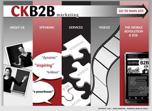 Small Business Website Design Sample Work - CKB2B Marketing