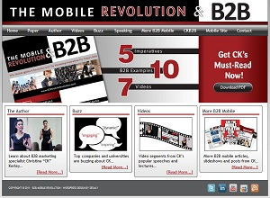 Small Business Website Design Sample Work - B2B Mobile Revolution