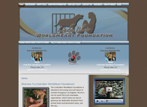 Small Business Website Design Sample Work - Linda Blair WorldHeart Foundation